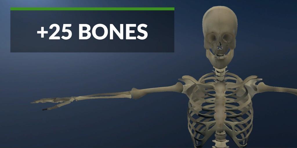 skeleton-anatomy-vr-gear-vr