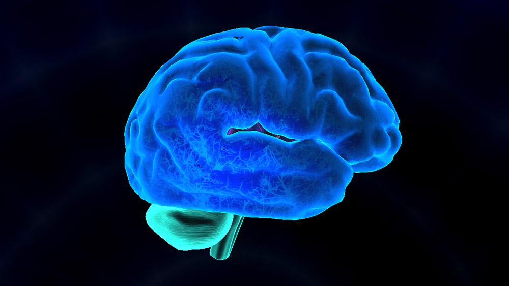 brain-vr-virtual-reality-education-unimersiv-3